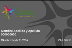 Ceiba Pass Platino